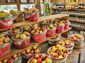 Events, Festivals, Orchards, and Wineries