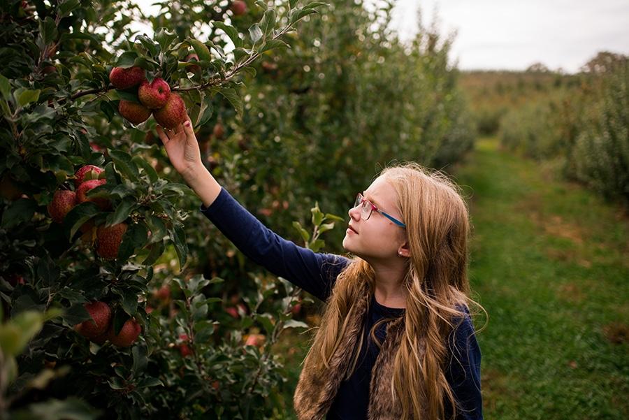 An Apple A Day: The Georgia Apple Festival